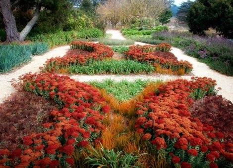Vrt Otporan Na Sušu